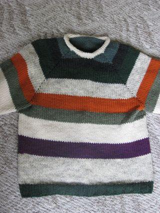 Stripy raglan
