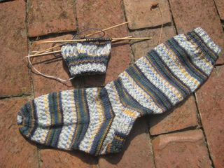 Regia sock
